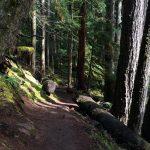 Clear Lake Trail