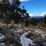 Cline Butte XC Trail