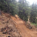 Cone Run Trail at Mt. Bachelor Bike Park