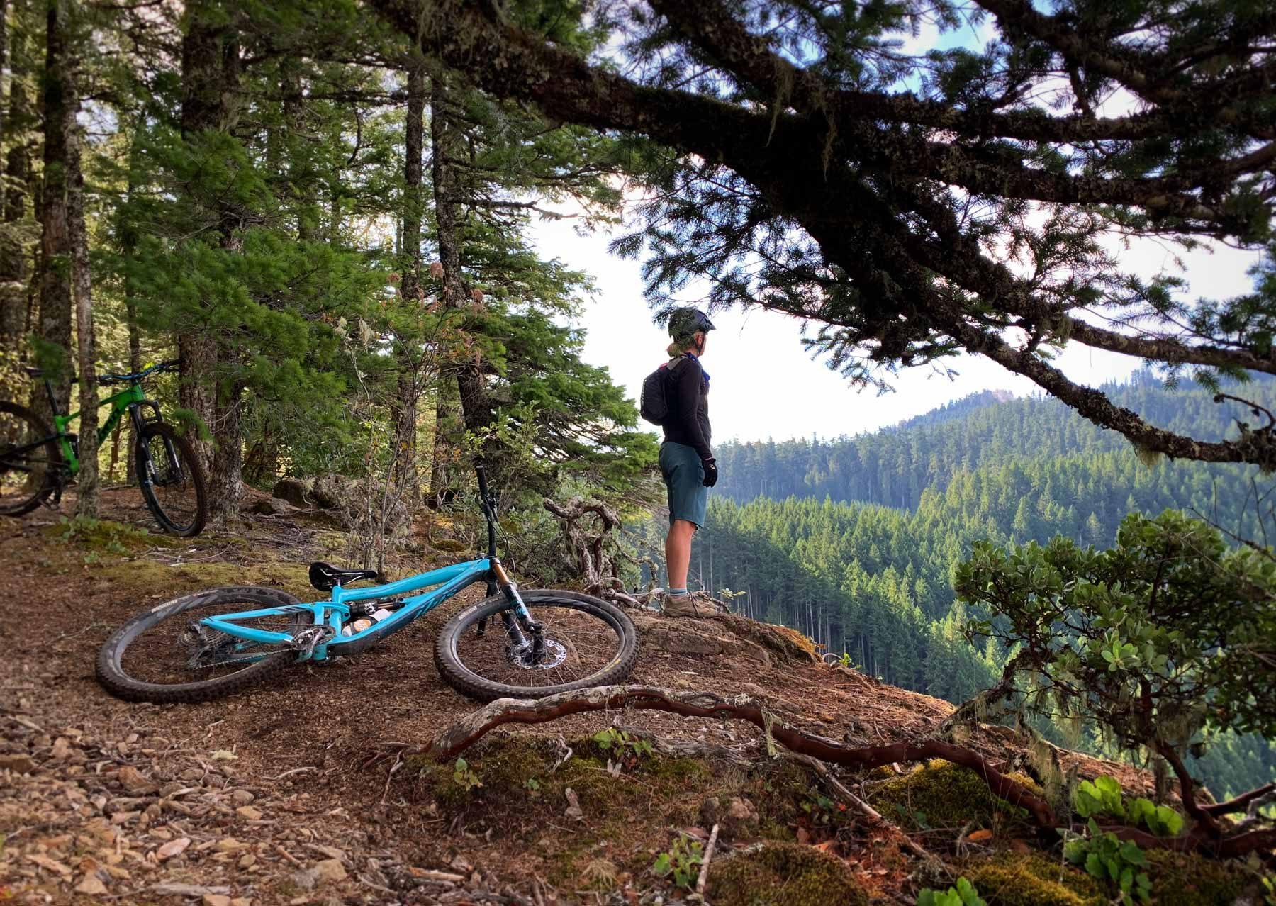 Dead Mountain Trail in Oakridge Oregon
