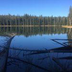 Deer Lake Area