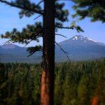 Dina Moe Humm Trail Vista