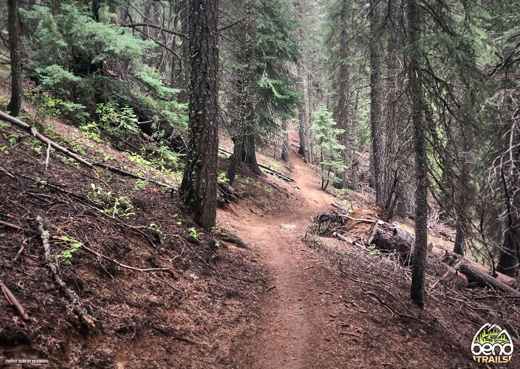 Flagline Tie Trail
