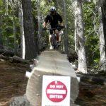 Funner Elevated Log Ride