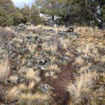 Golden Basin Trail
