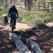 Grand Slam Trail Log Stunt