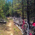 La Pine State Park Mountain Bike Trails — Pic: Scott Wilkinson