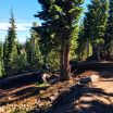 Lava Flow Berms at Mt. Bachelor Bike Park