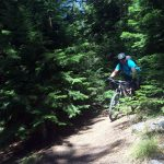 Lookout Mountain Downhill