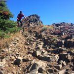 Lookout Mountain Rock Gardens