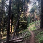 Lookout Mountain Trail