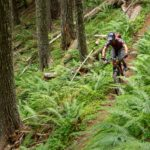 Lower Goodman Trail