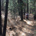 Lower Mrazek Trail
