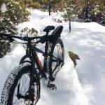 MTB Fatbike Trail