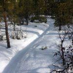 MTB Snow Trail