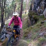 MTB Trails at Cougar Creek by Travis Holman