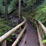 McKenzie Trail Bridge