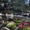 Metolius-Windego trail