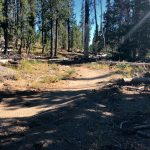 Ridge Loop Trail