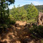 Rocks on Tumalo Ridge Trail