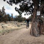 Sand Canyon Trail