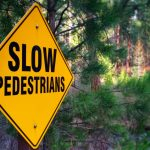 Shevlin Park Trails