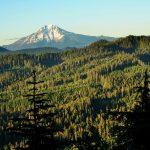 Swamp Peak Trail Vista –Photo: Marc Fortier