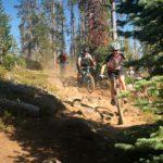 Swampy Dutchman Trail
