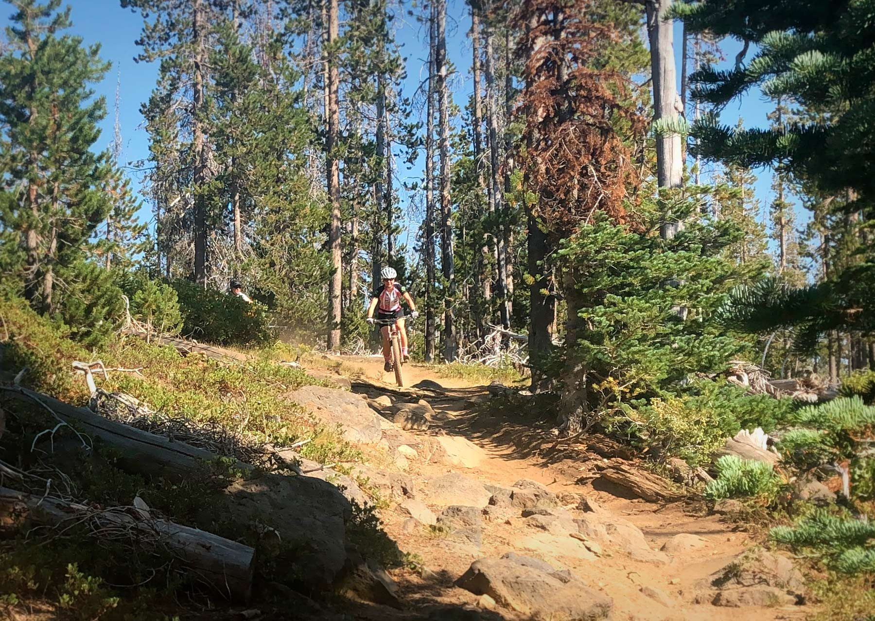 Swampy Dutchman Trail in Bend