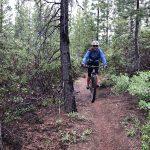Swampy Swede Tie Trail