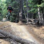Tiddlywinks Jump Trail