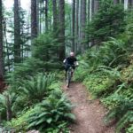 Tire Mountain Trail Oakridge