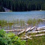 Trail 99 Waldo South Trail - Photo by Bruce Bradshaw