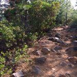 Tumalo Ridge Trail in Bend
