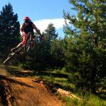 Tyler's Meadow Jumps