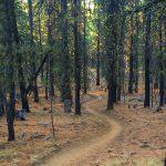 Upper Grand Slam Trail