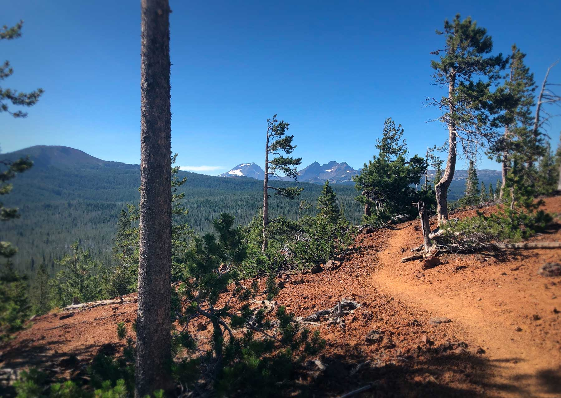 Vista Butte Trail