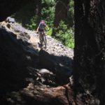 Young's Rock Trail in Oakridge