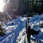 Ben's Mountain Bike Trail in Bend