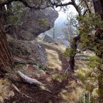 Cline Butte Backside Trail