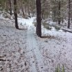 Coyote Loop Trail in the Snow