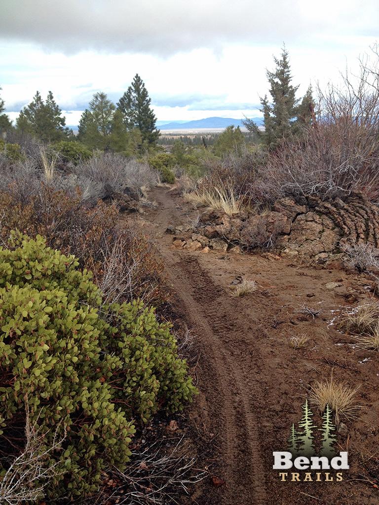 Coyote Loop Mountain Bike Trail