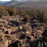 Crooked Arm MTB Trail
