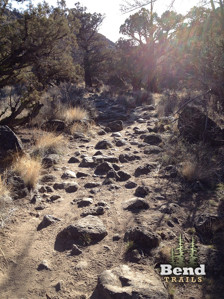 MTB Trail in Dry River Canyon