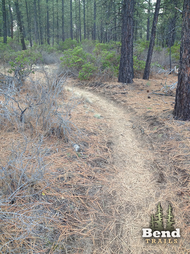 Expressway MTB Connector Trail