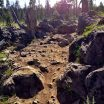 Funner Trail Rock Garden