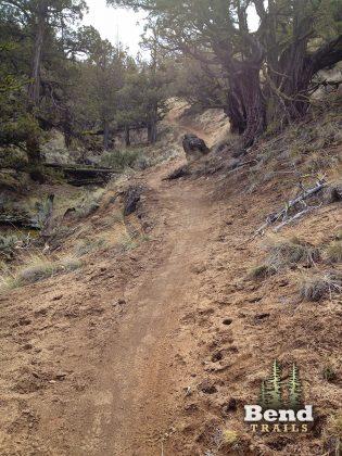 Horse Ridge MTB Downhill