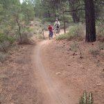 Mountain Biking Kent's Trail