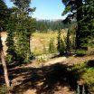 Metolius-Windigo Trail Meadow