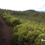 Swamp Wells Butte